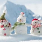Ассоциация криобанков от всей души поздравляет Вас с Новым 2014 годом и Рождеством!