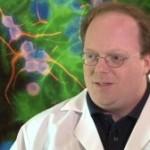 Прогноз розвитку клітинних технологій у 2014 році