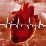 Стволовые клетки в лечении сердечно-сосудистых заболеваний