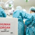 Досягнення трансплантології в Україні і в світі