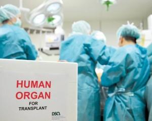 0_transplantation