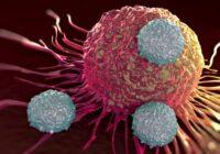 CarT Cells